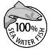 天然の魚を料理