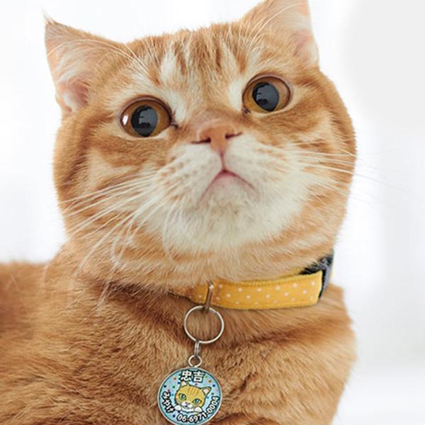 ぶら下げタイプ猫用迷子札