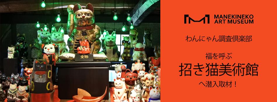 わんにゃん調査倶楽部!福を呼ぶ招き猫美術館へ潜入取材!