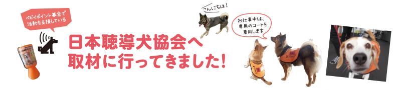 日本聴導犬協会へ取材に行ってきました。